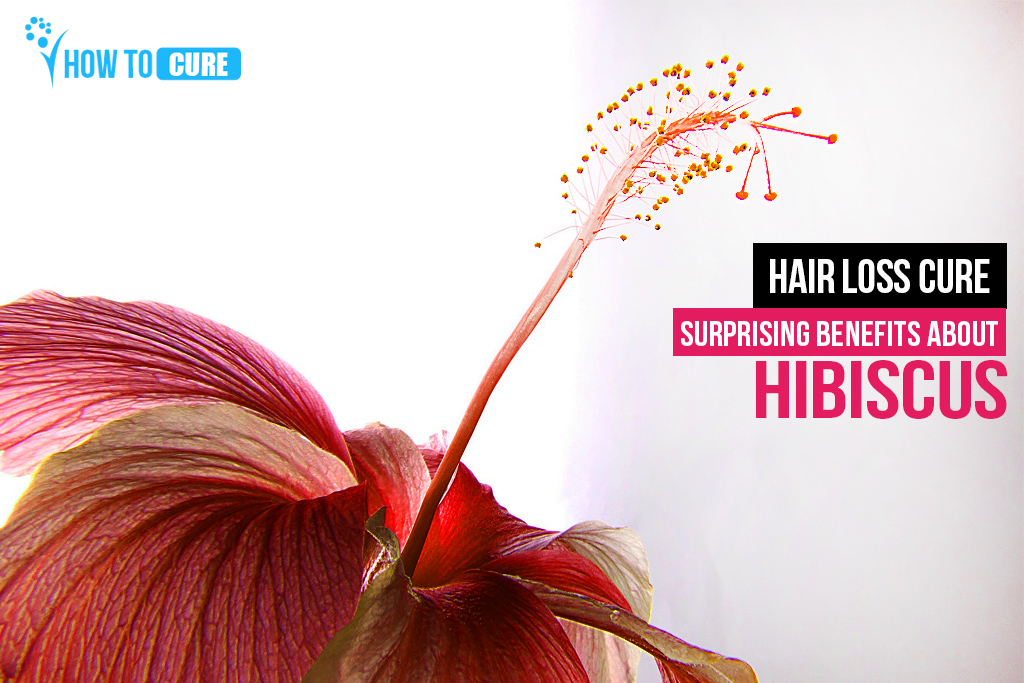 Hibiscus For Hair