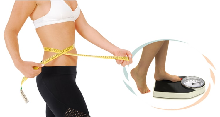 Sunflower Lecithin for Weight Loss