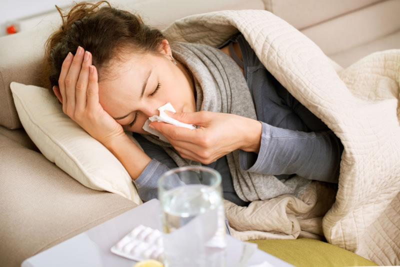 eucalyptus oil for cough and cold