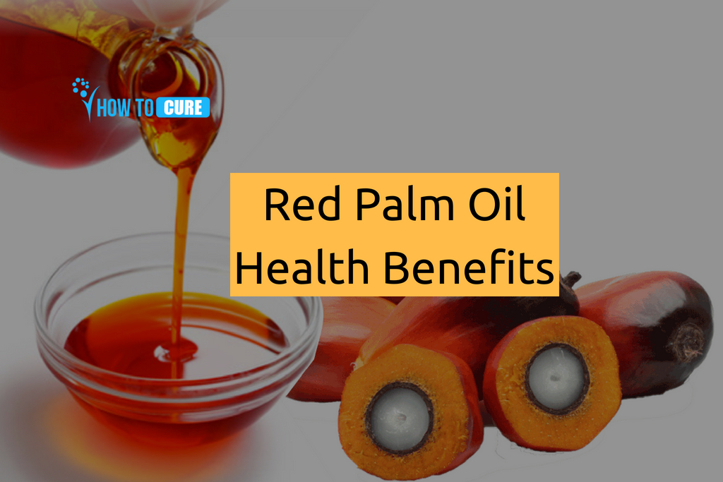 Red Palm Oil Benefit for Health
