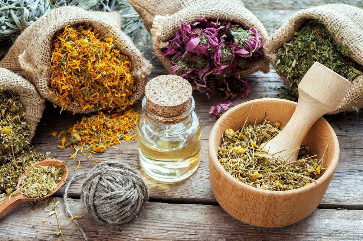 herb foods for healthy kidneys