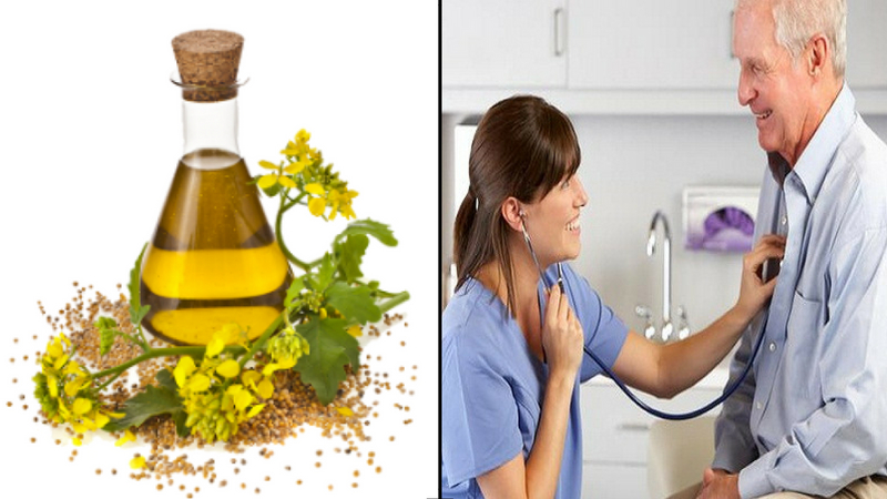 mustard oil for health of cardiac system