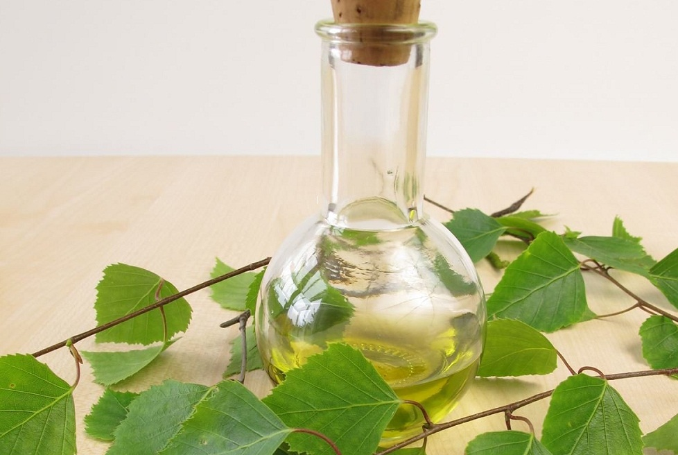 birch bud essential oil for uric acid or gout
