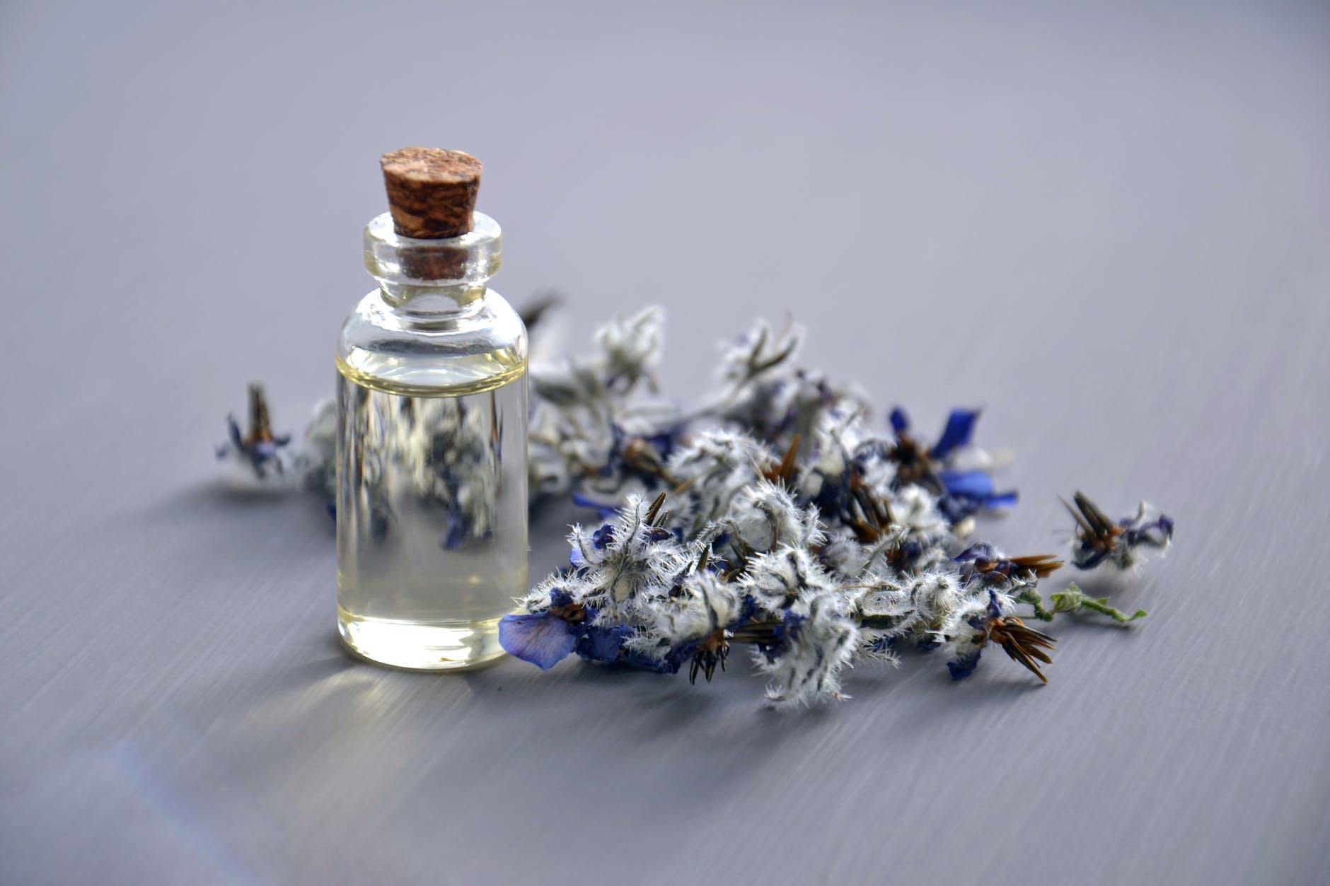 lavender oil for migraine