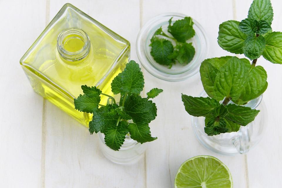 Food Mint Oil Essential Oils Leaf Herb Healthy