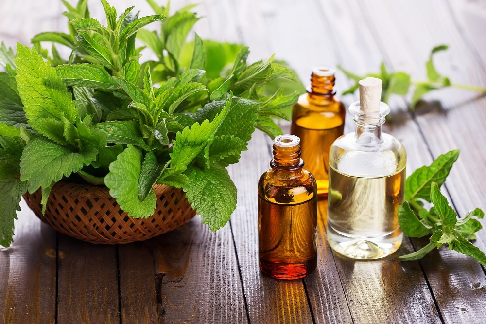peppermint oil for a cough
