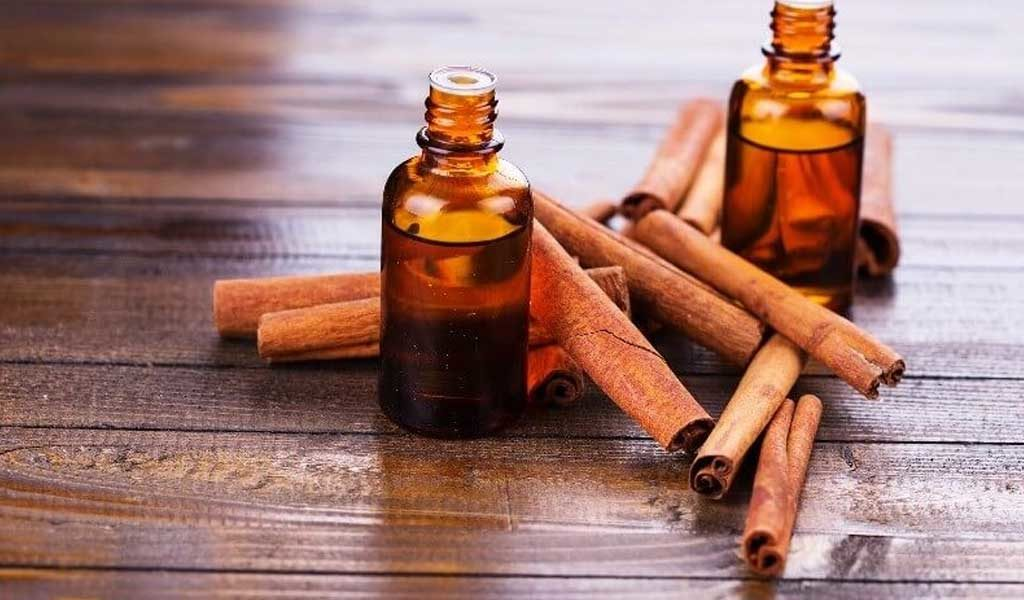 cinnamon oil for lice