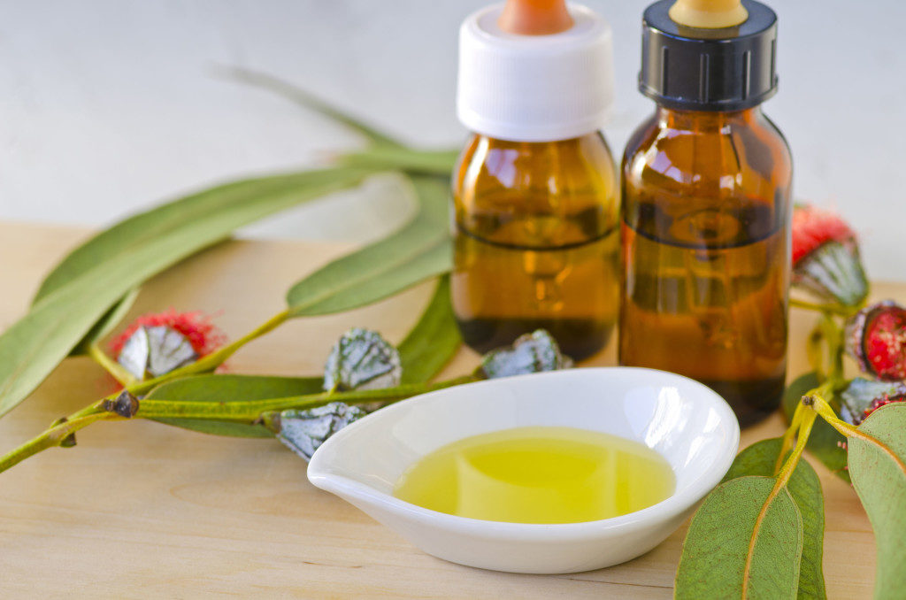 eucalyptus essential oil for cold sores