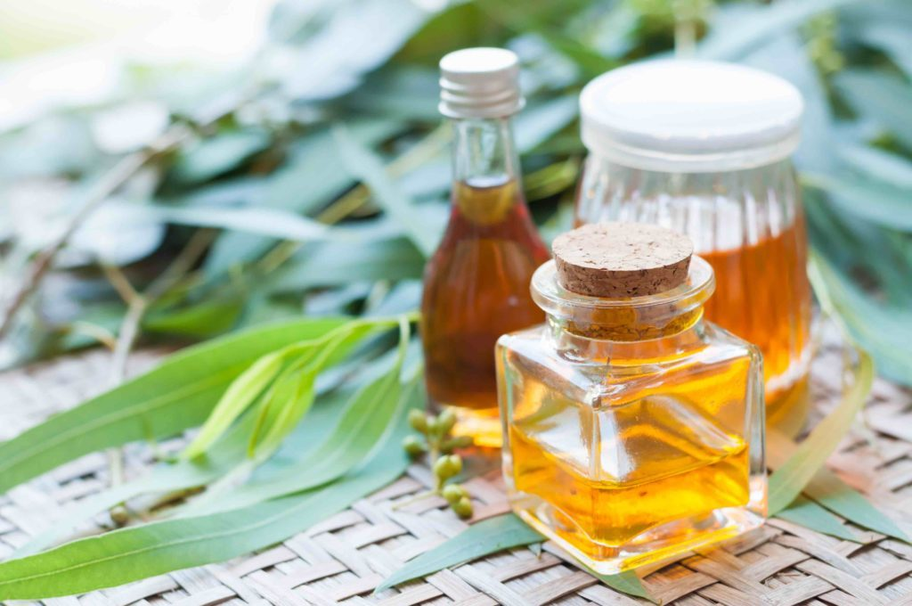 eucalyptus oil for kidney stones