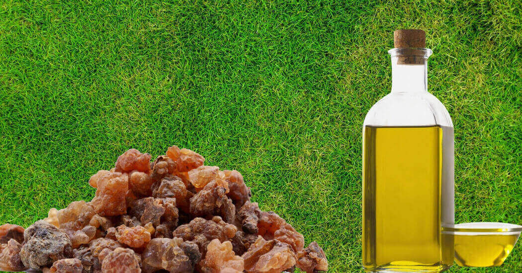 frankincense essential oil for focus