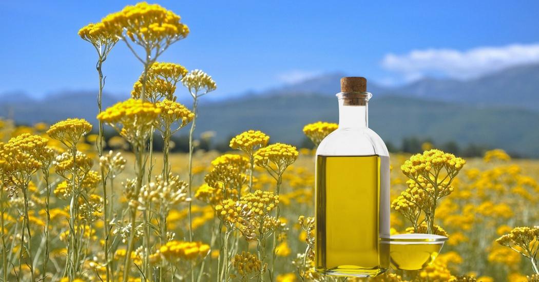 helichrysum oil for tinnitus