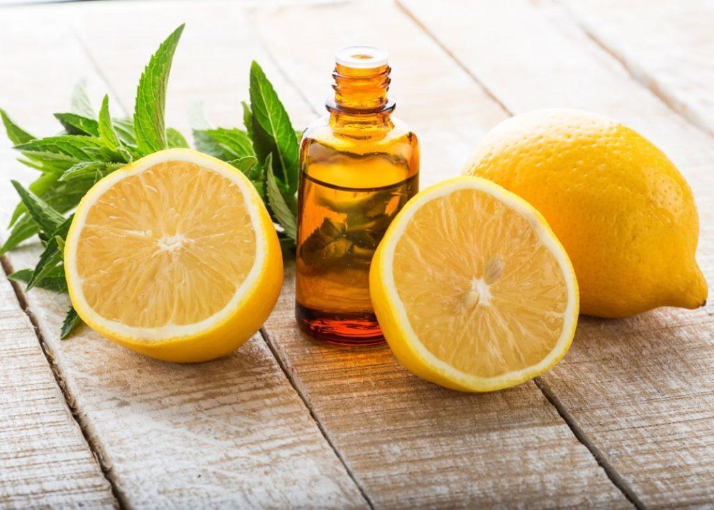 lemon balm oil for cold sores