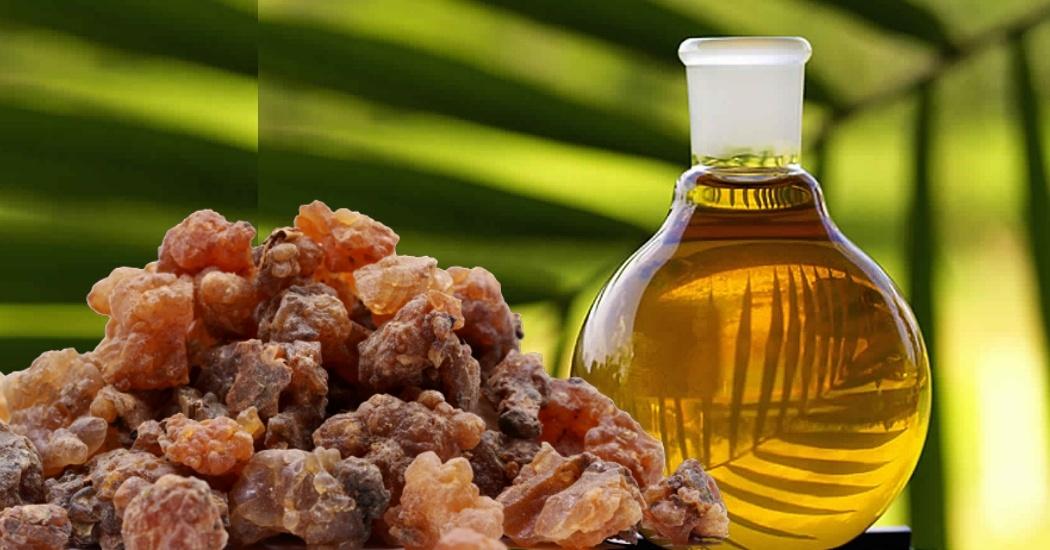 myrrh oil for poison ivy