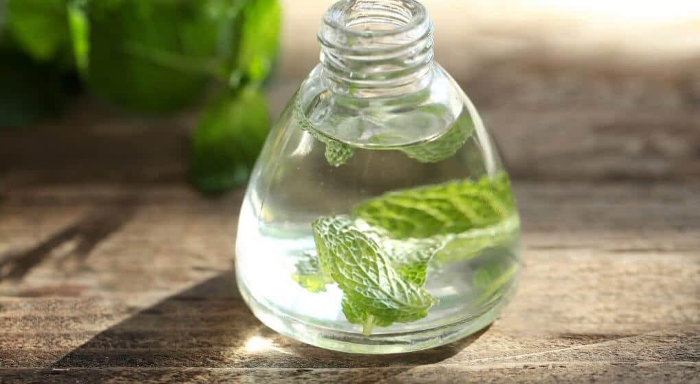 peppermint essential oil for plantar fasciitis
