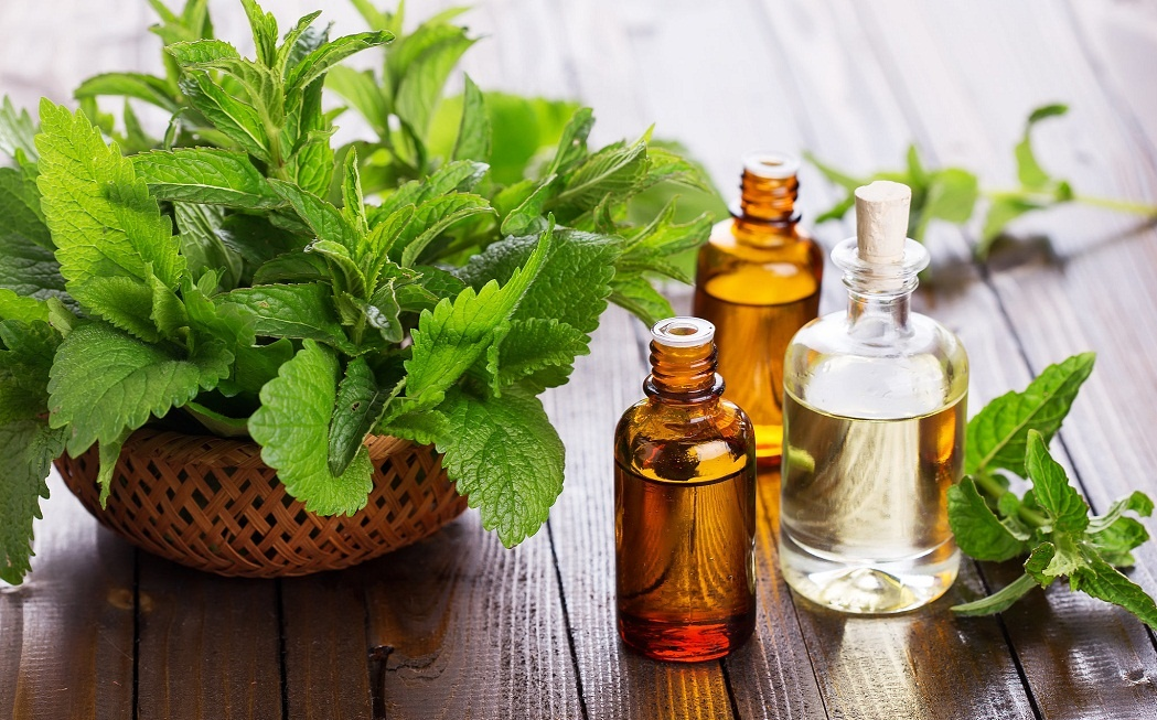 peppermint oil for flu