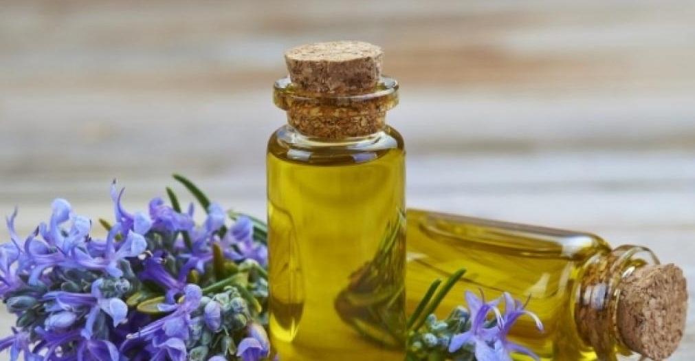 rosemery oil for mosquito bites