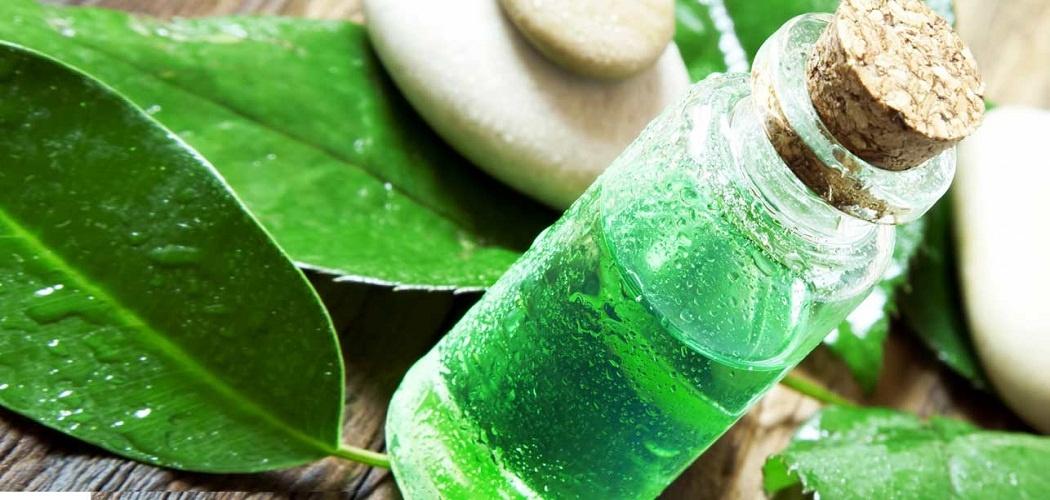 tea tree oil for poison ivy