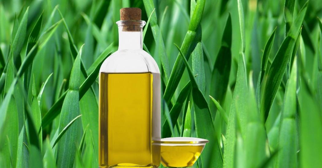 vetiver essential oil for focus