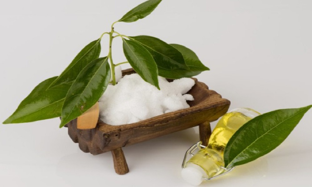 camphor essential oil for mosquitoes bite