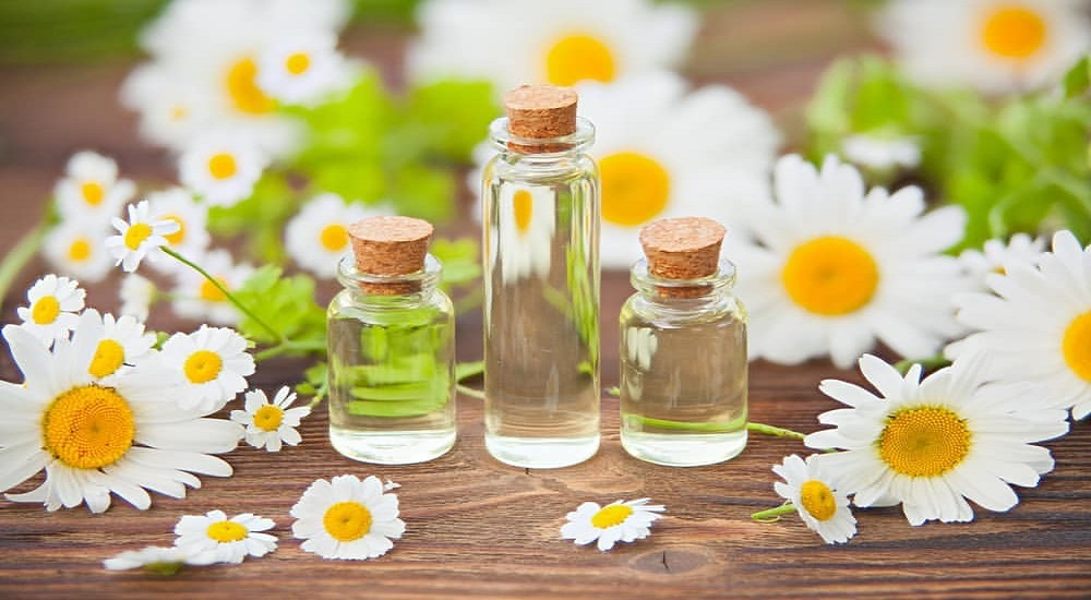 chamomile oil for babies