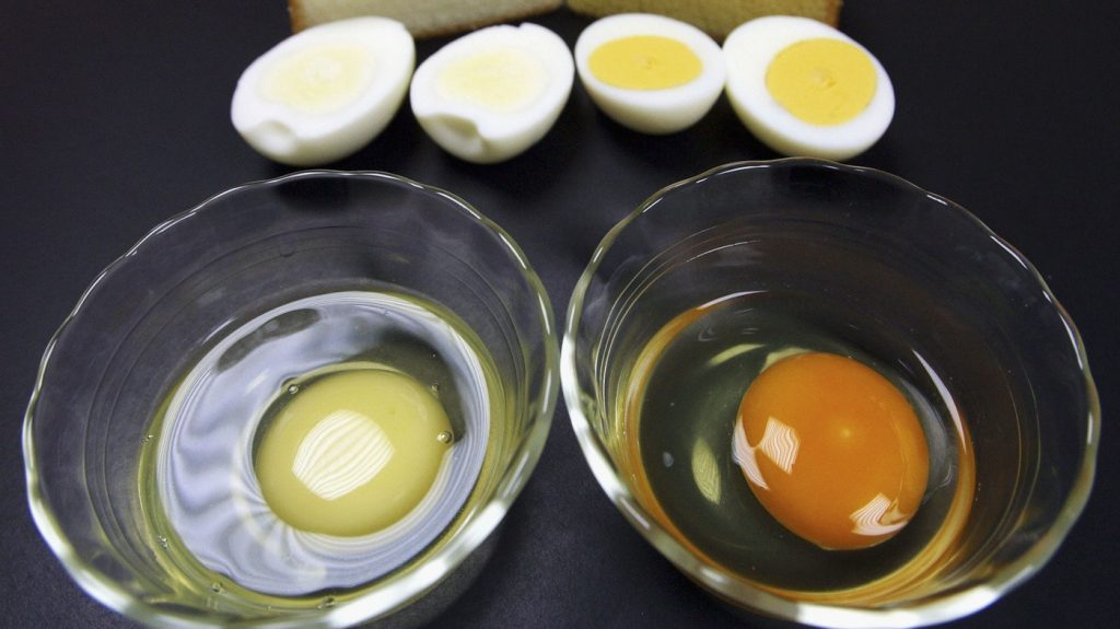 egg whites for bed sores