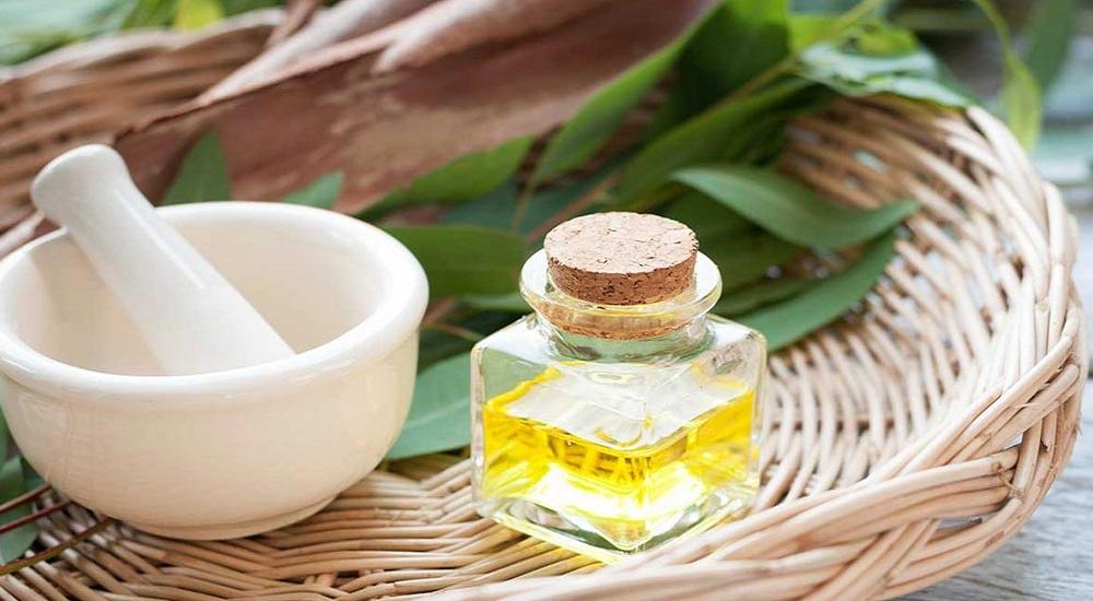 eucalyptus essential oil for energy