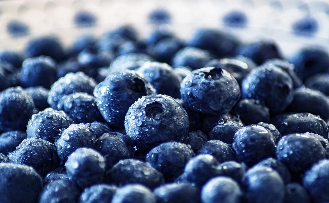 de délicieux bleuets pour perdre du poids
