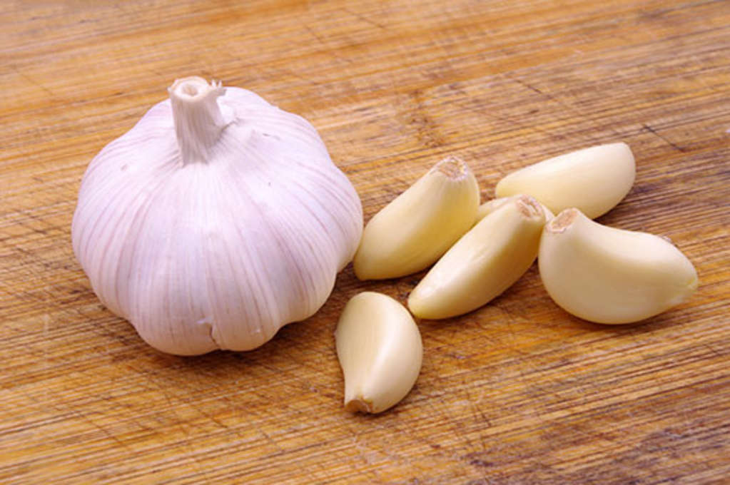 garlic for removing common warts