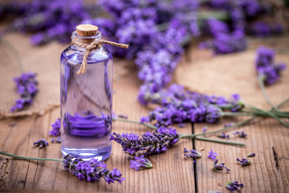 lavender essential oil to cure bed sores