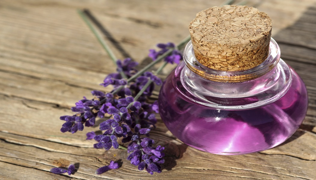 lavender oil for itching