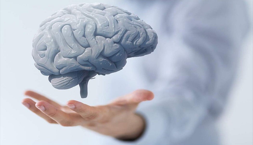 noni for improves brain health