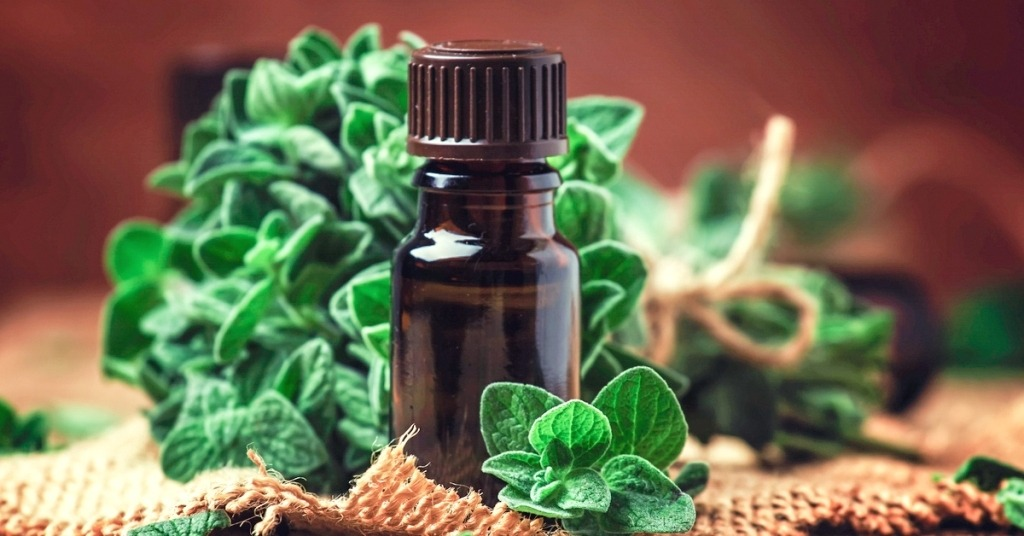 oregano oil for ringworm