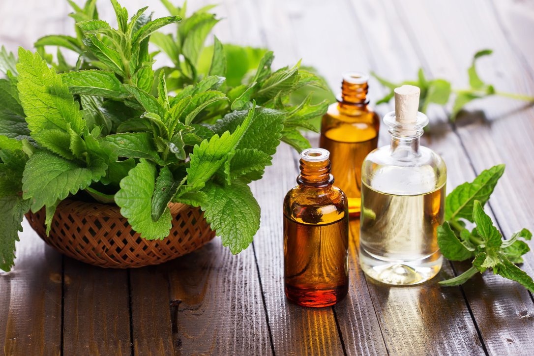 peppermint essential oil for curing itching in ear