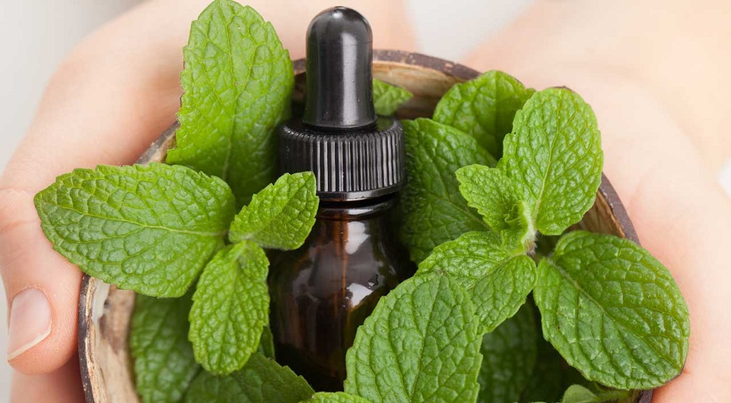 peppermint essential oil for heal a hickey