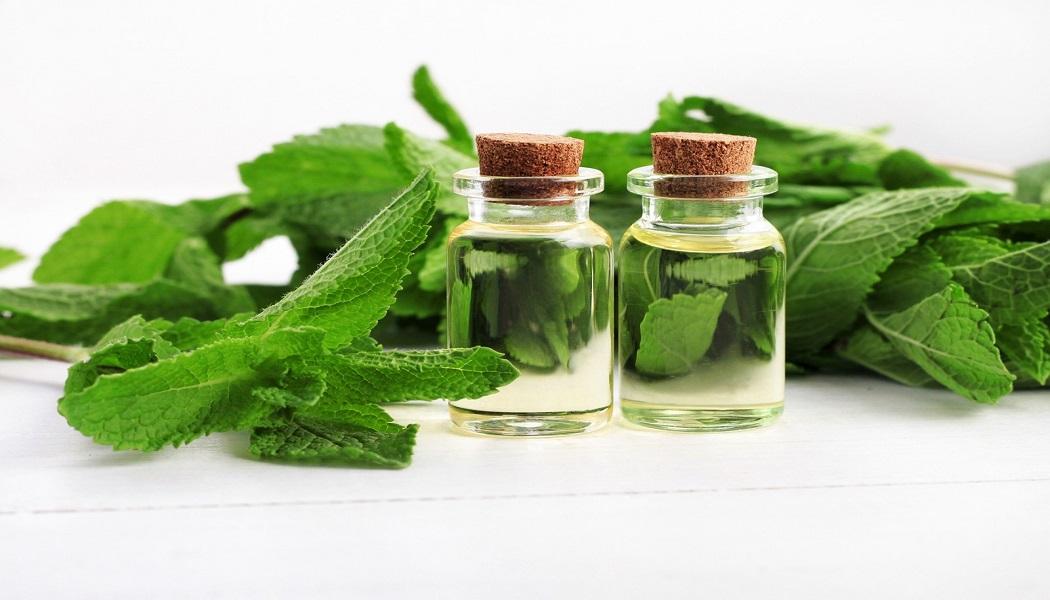 peppermint oil for hair loss