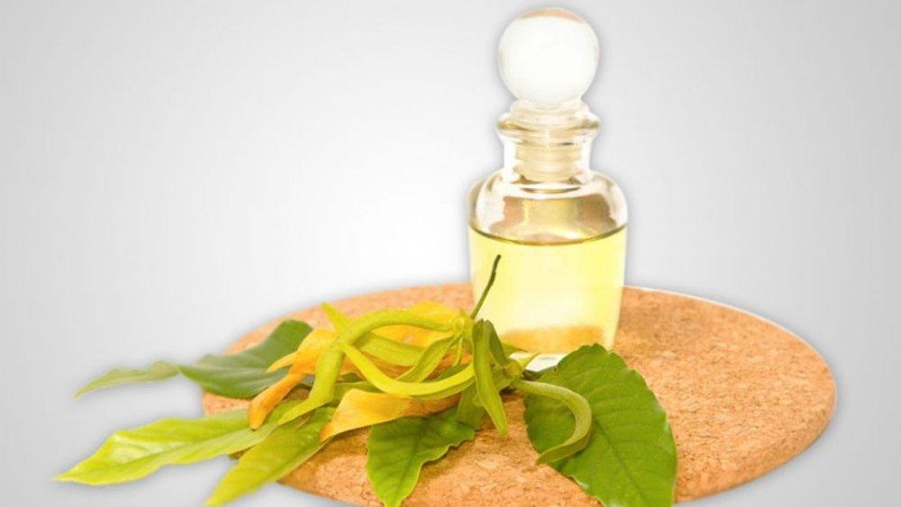 ylang ylang essential oil for high blood pressure