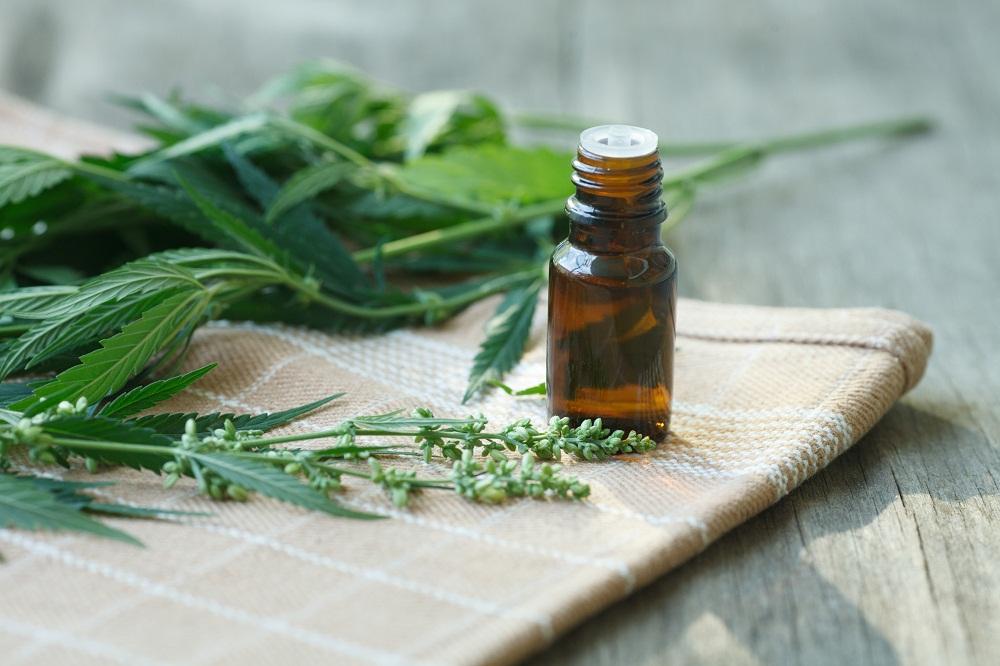 Cannabis Essential oil
