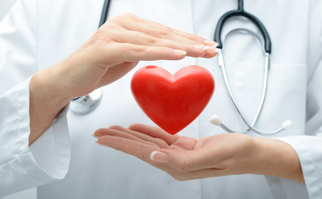 astragalus root for cardiac health