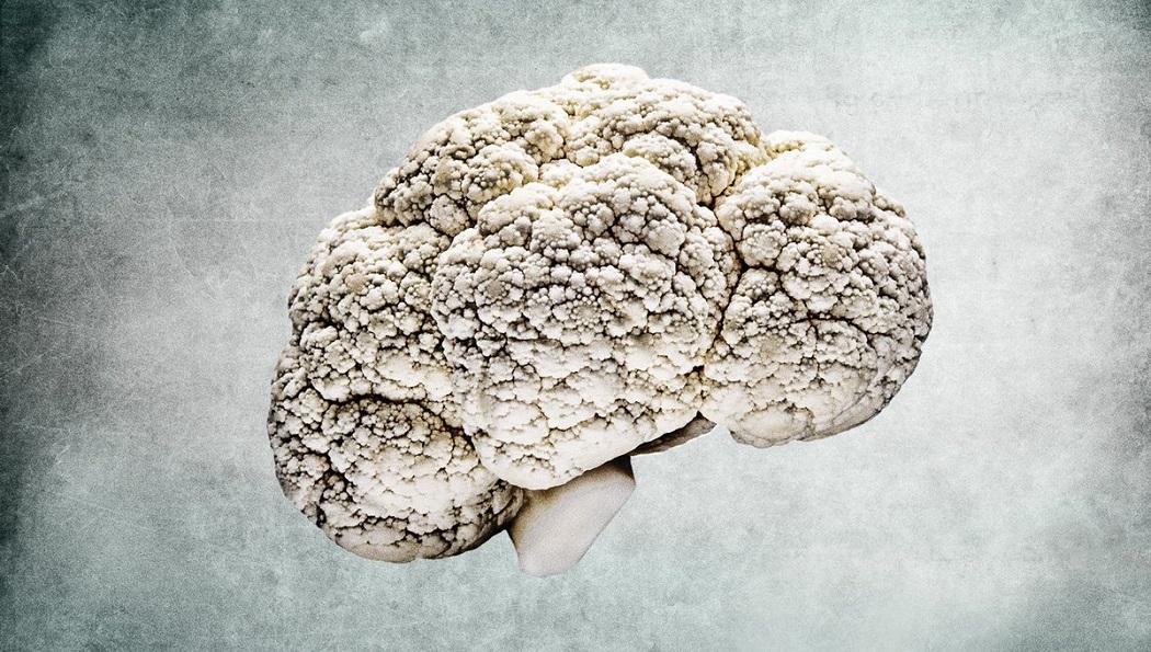 ginseng benefits in improving brain functioning