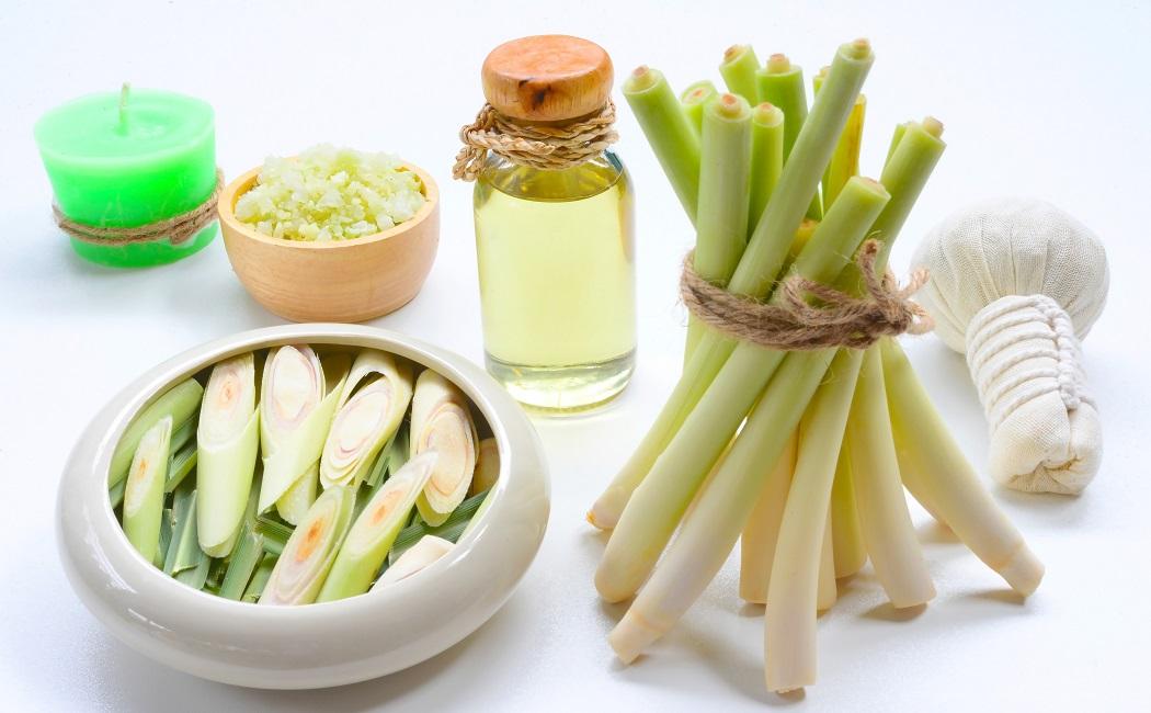 lemongrass essential oil for leg pain