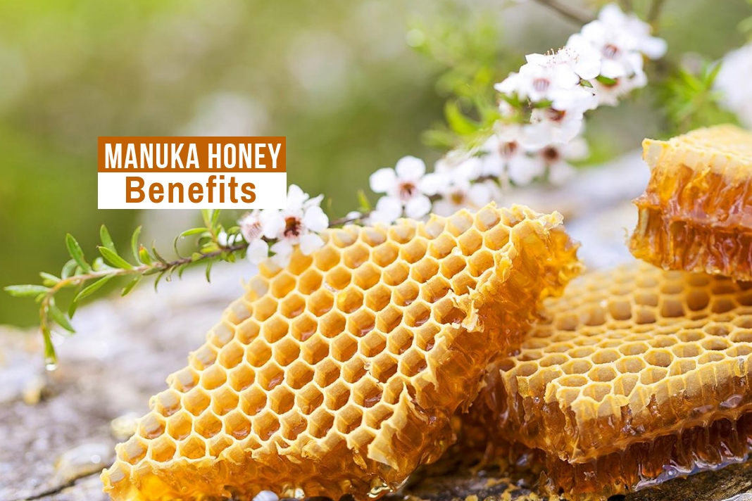 manuka honey benefits for hair tablespoon of manuka honey honey benefits