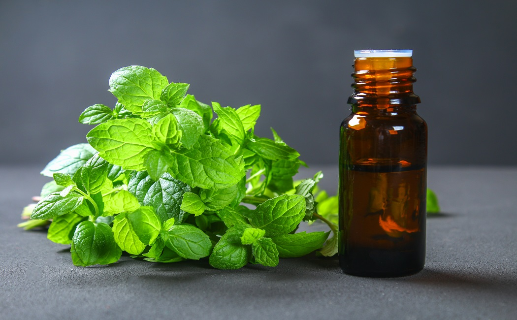peppermint essential oil for fungal infections