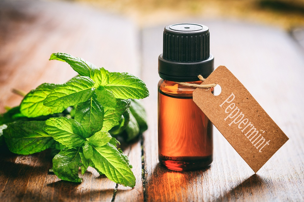 Peppermint Essential Oil for Sinus