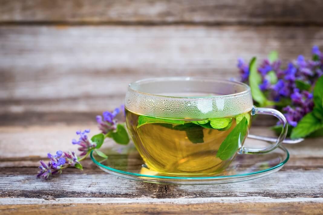 Catnip Tea Benefits