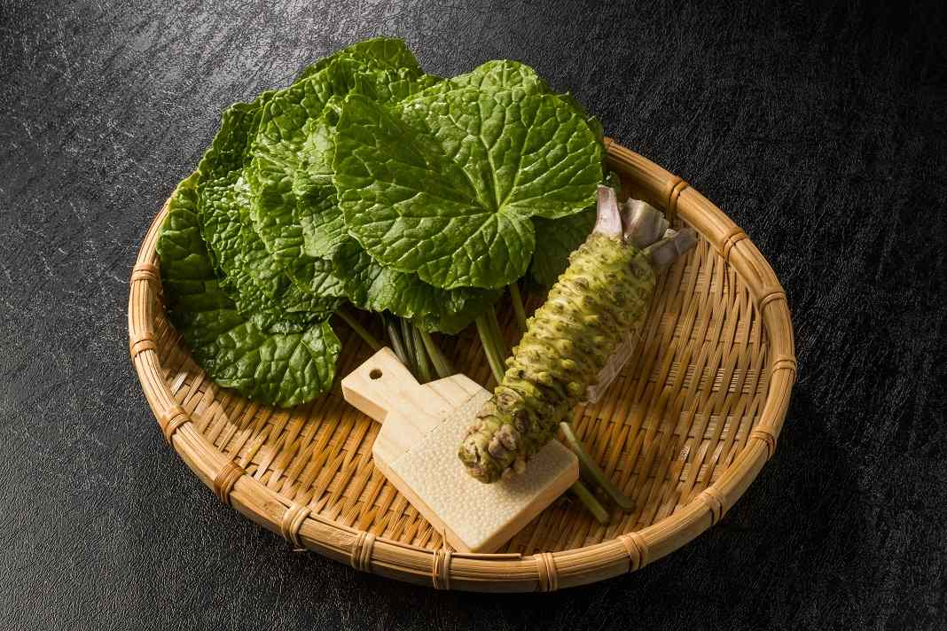 Benefits of Wasabi