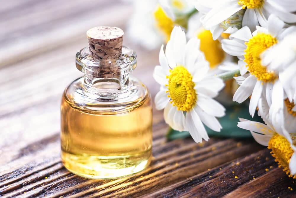 """Résultat de recherche d'images pour """"huile essentielle de camomille romaine"""""""