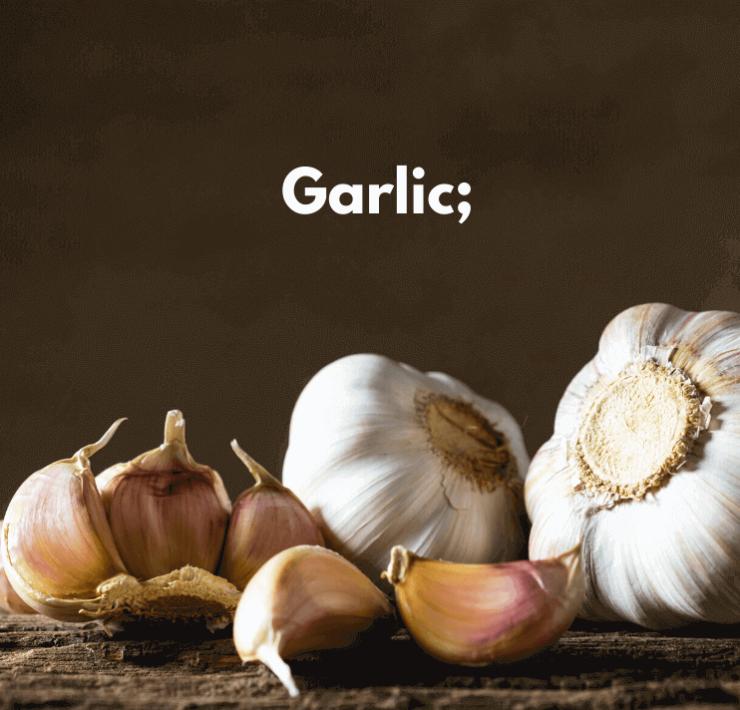Garlic;