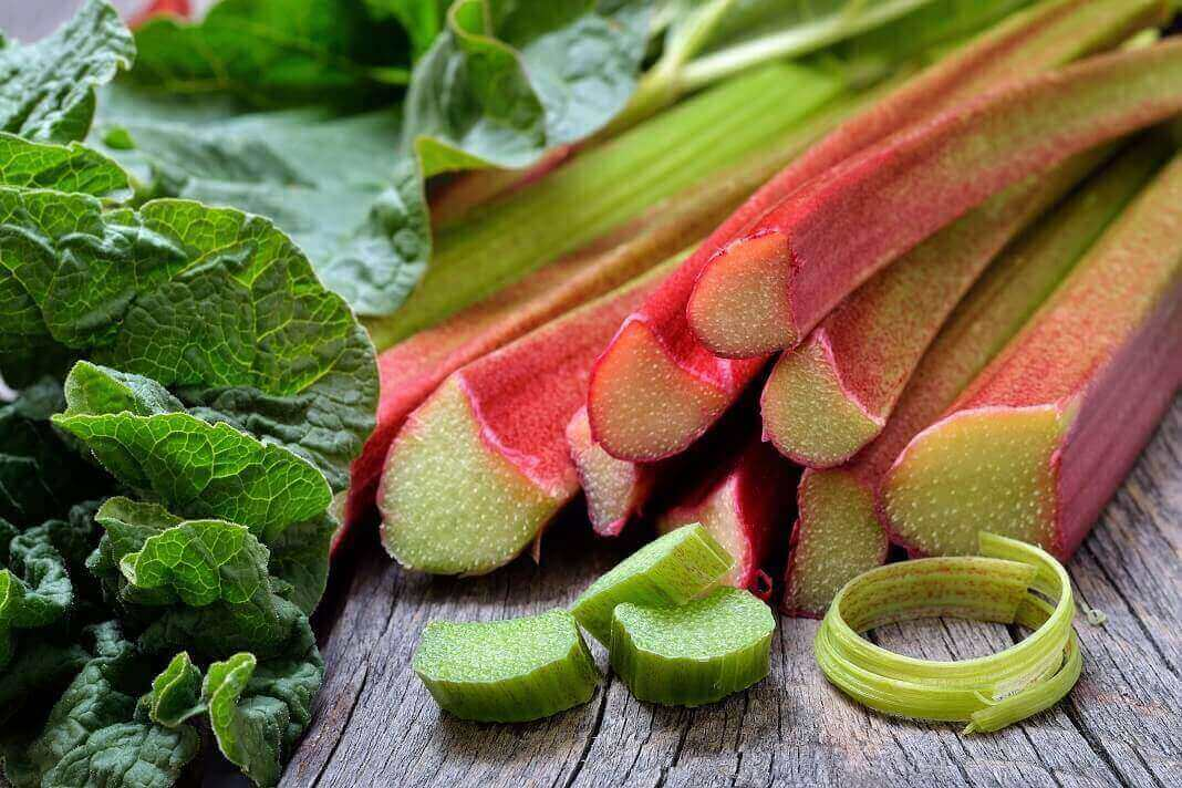 rhubarb health benefits