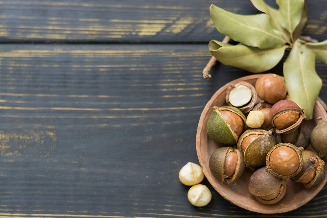 Macadamia Nuts: Benefits And Precautions | How To Cure